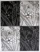 Flor de Mayo Relief & Intaglio 16in x 12 in 2013 edition size: 3