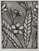 Plumeria Intaglio 8in x 6in 2013 edition size: 3