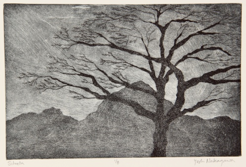 Silueta Etching 6in x 9in 2013 edition size: 8