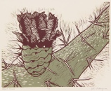Desert Flower Reductive Woodcut 8in x 10in 2012 edition size: 9