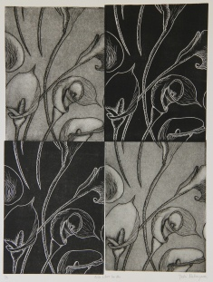 Calla Lilies for Aki Relief & Intaglio 16in x 12in 2007 edition size: 4