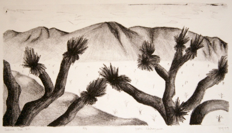 Joshua Tree N.P.