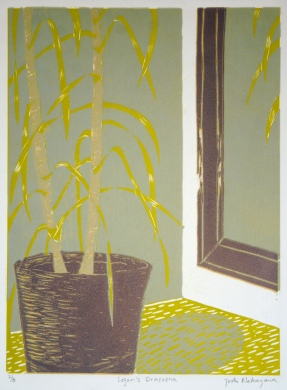 Logan's Draceana Reductive Linocut 12in x 9in 2007 edition size: 8