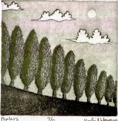 Poplars Etching 4in x 4in 2009 edition size: 7