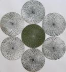 Uzumaki Etching 14.5in diameter 2016